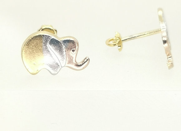 Elefante Florentino