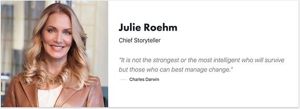 Julie Roehm - Storyteller - experience -