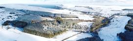 Snowy Parkmore.jpg