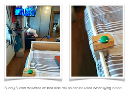 Buddy Button Bed Rail