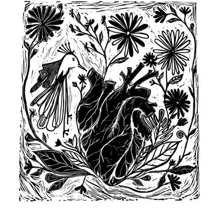Pássaro-Coração, 2019