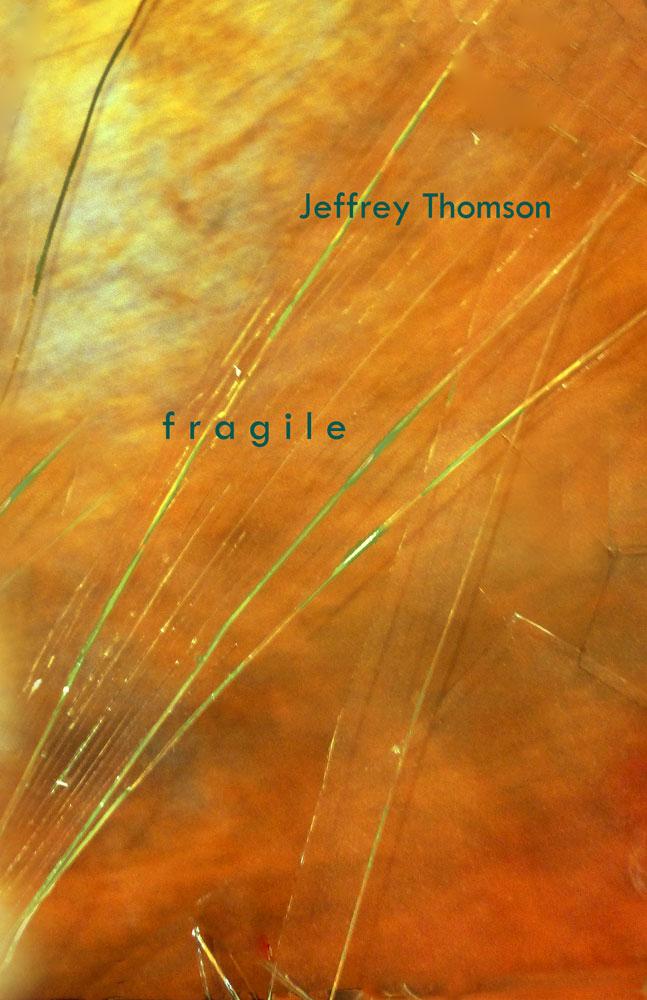 Thomson.fragile-Front-COVER-5.21.15.jpg