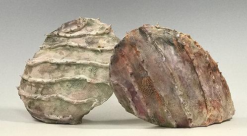 Lichen Pods