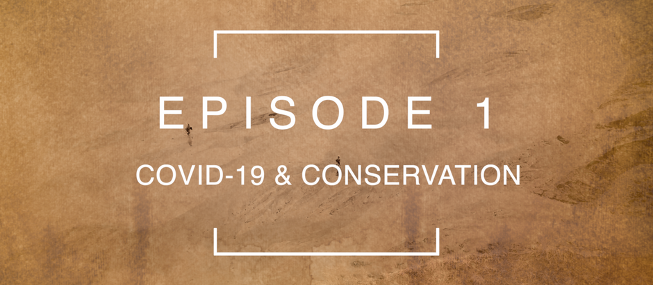Episode 1: COVID-19 & Conservation with Ed Sayer and Claire Lewis | North Luangwa, Zambia.