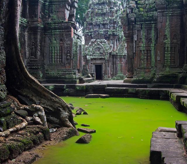 ta-prohm-temple-angkor-siem-reap-cambodia.jpg