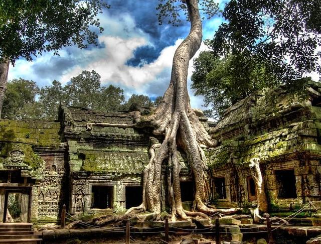 ta-prohm-temple.jpg