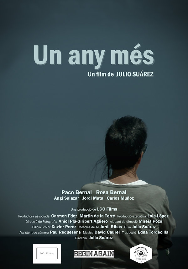 poster un any mes 40.jpg