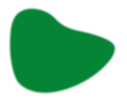 forme verte programme.png