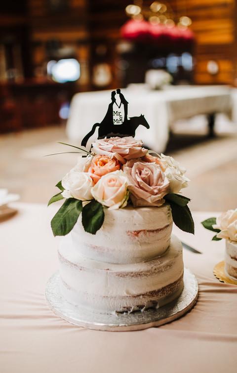 horse on cake.jpg