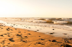 Golden Shores of Cavendish