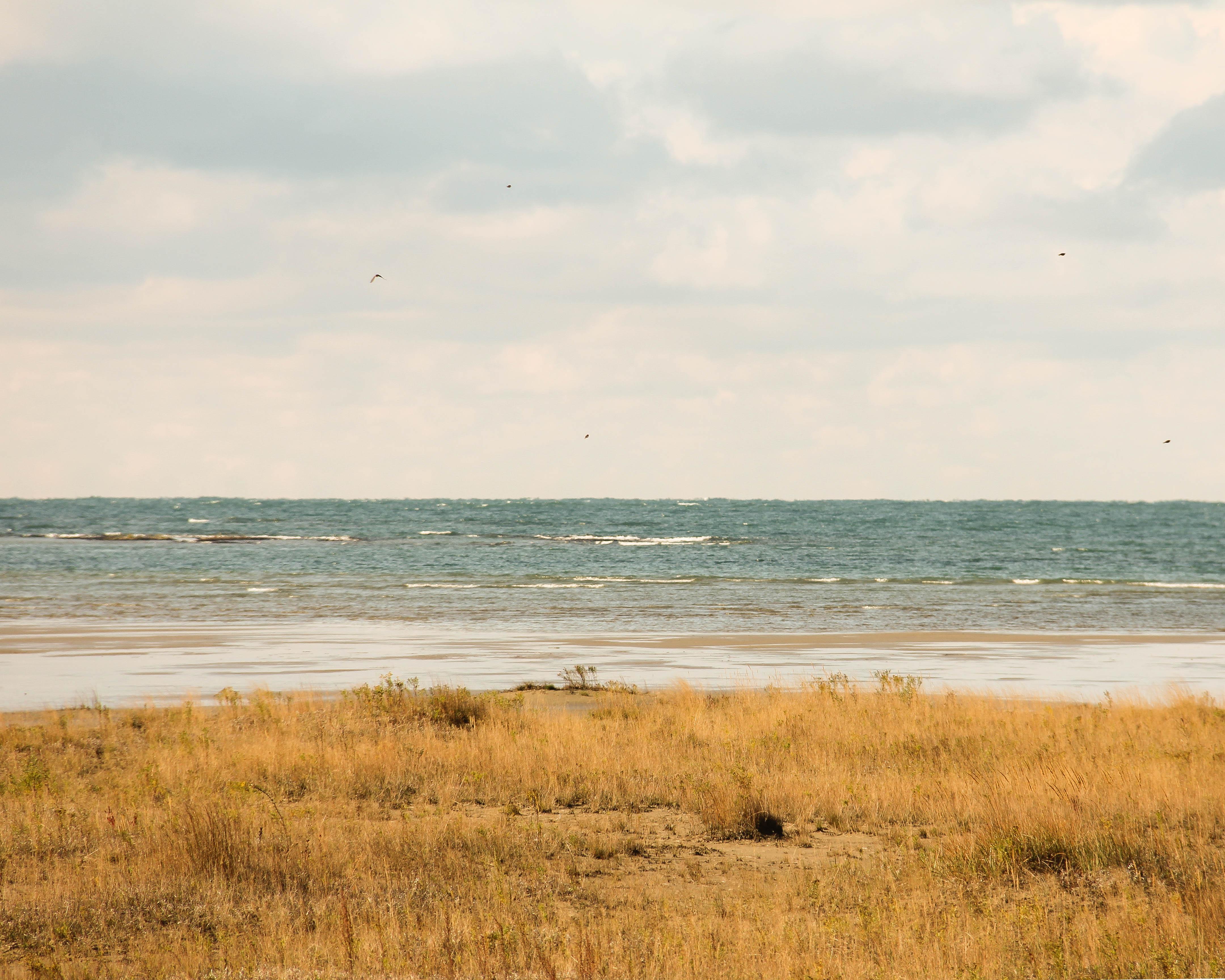 Singing Sands Beach II