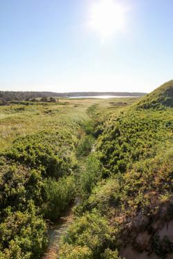 The Island of Prince Edward