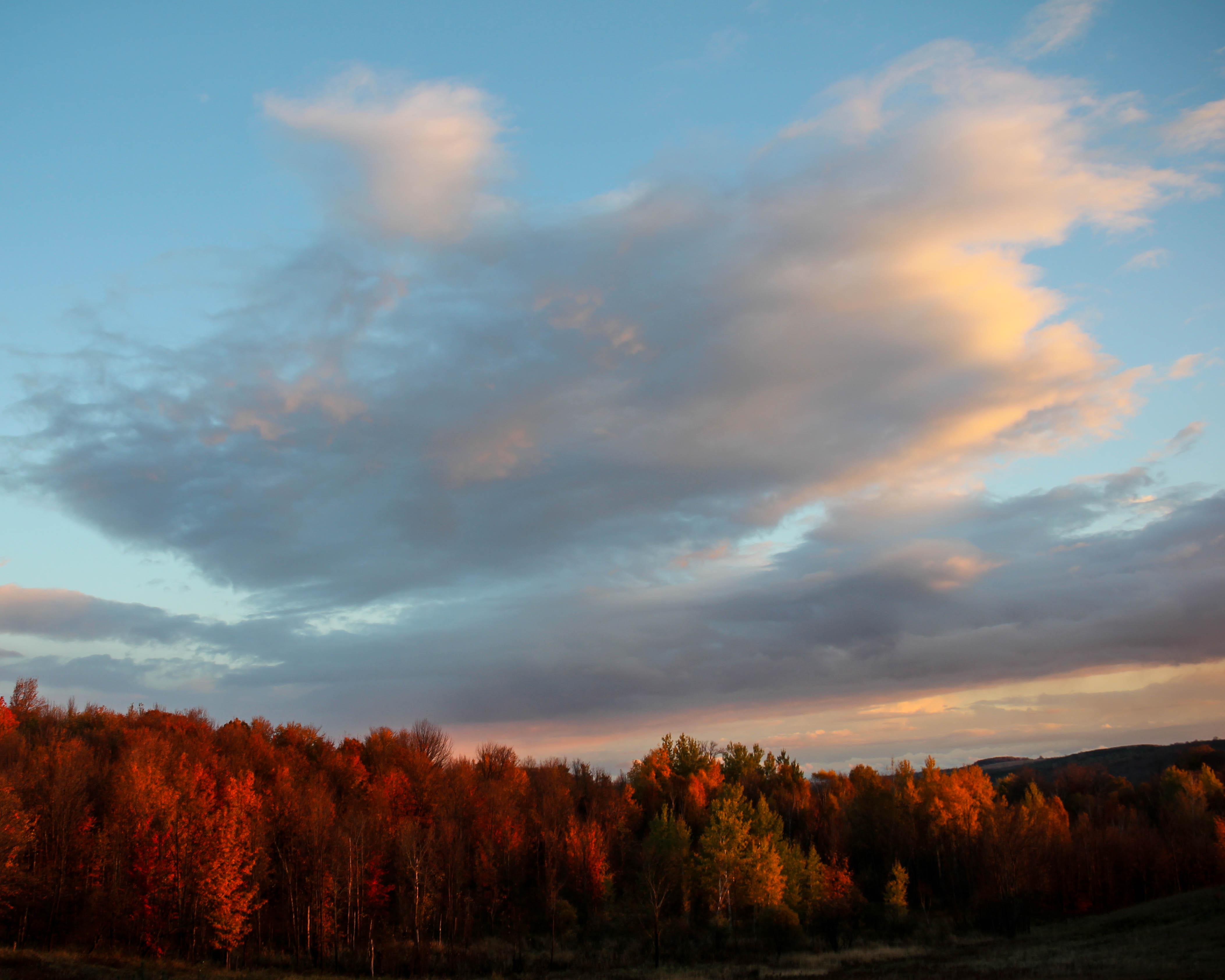 Canadian Autumn II