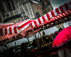 Rainy Market