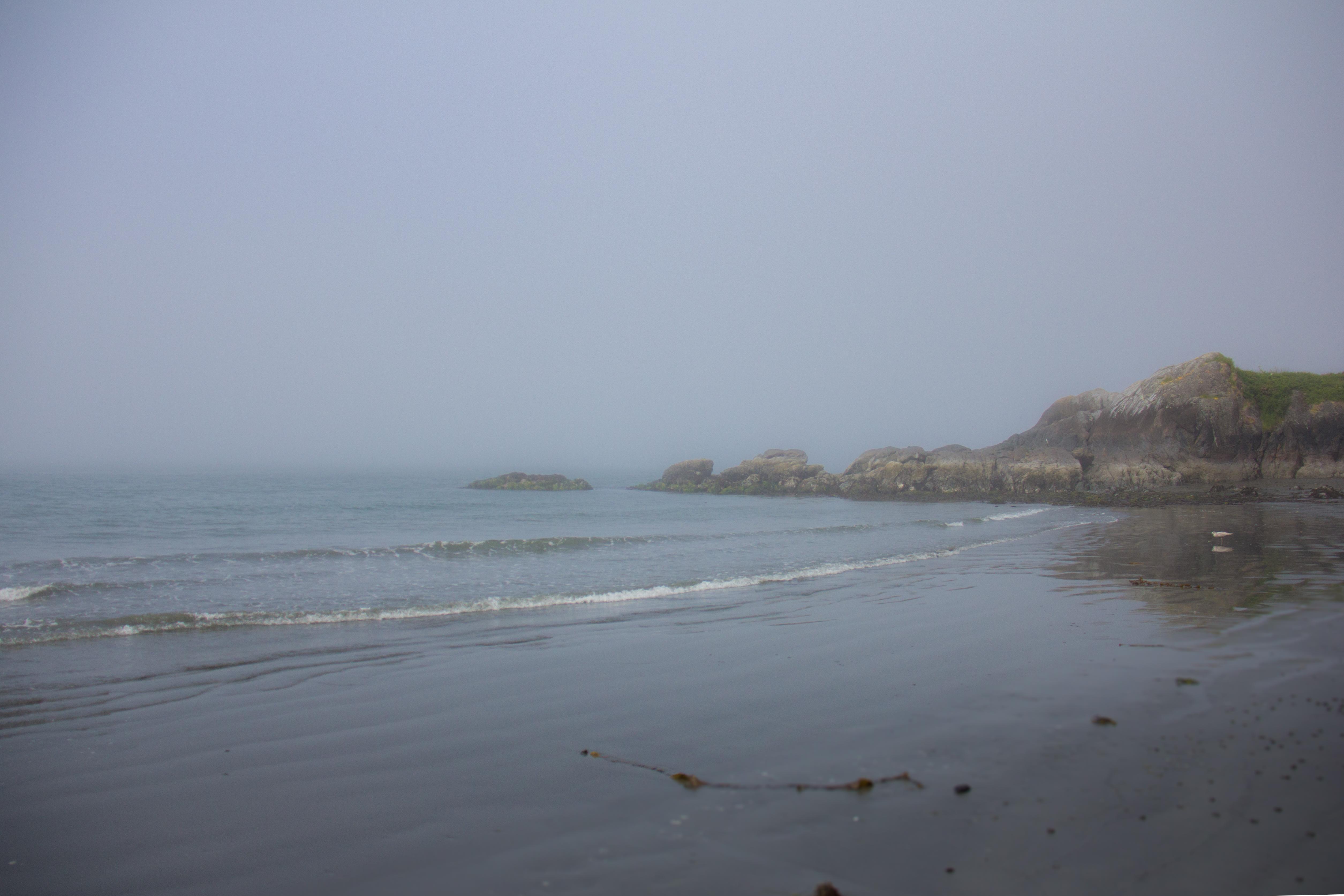 flea beach low tide