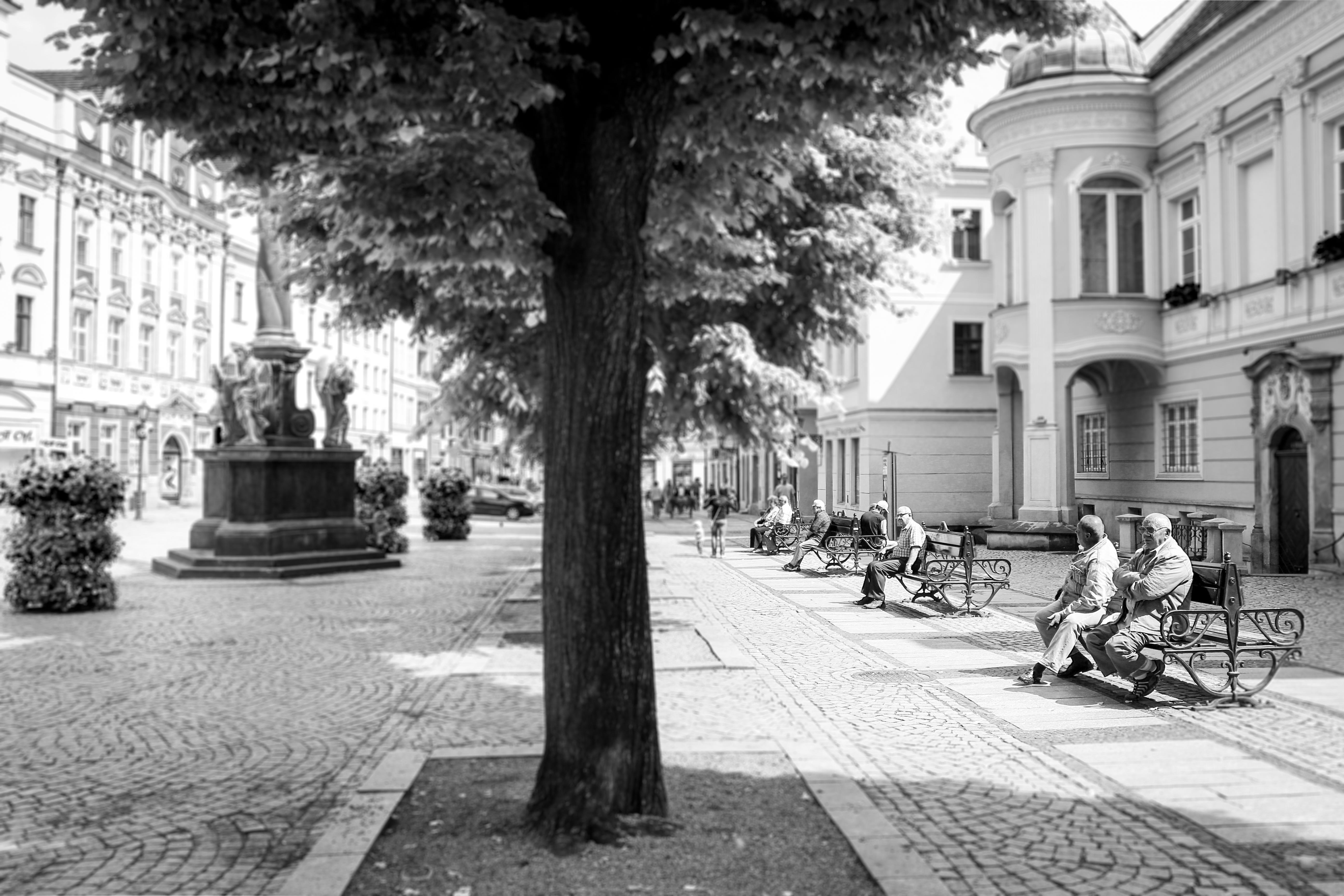 City Centre, Swidnica.jpg