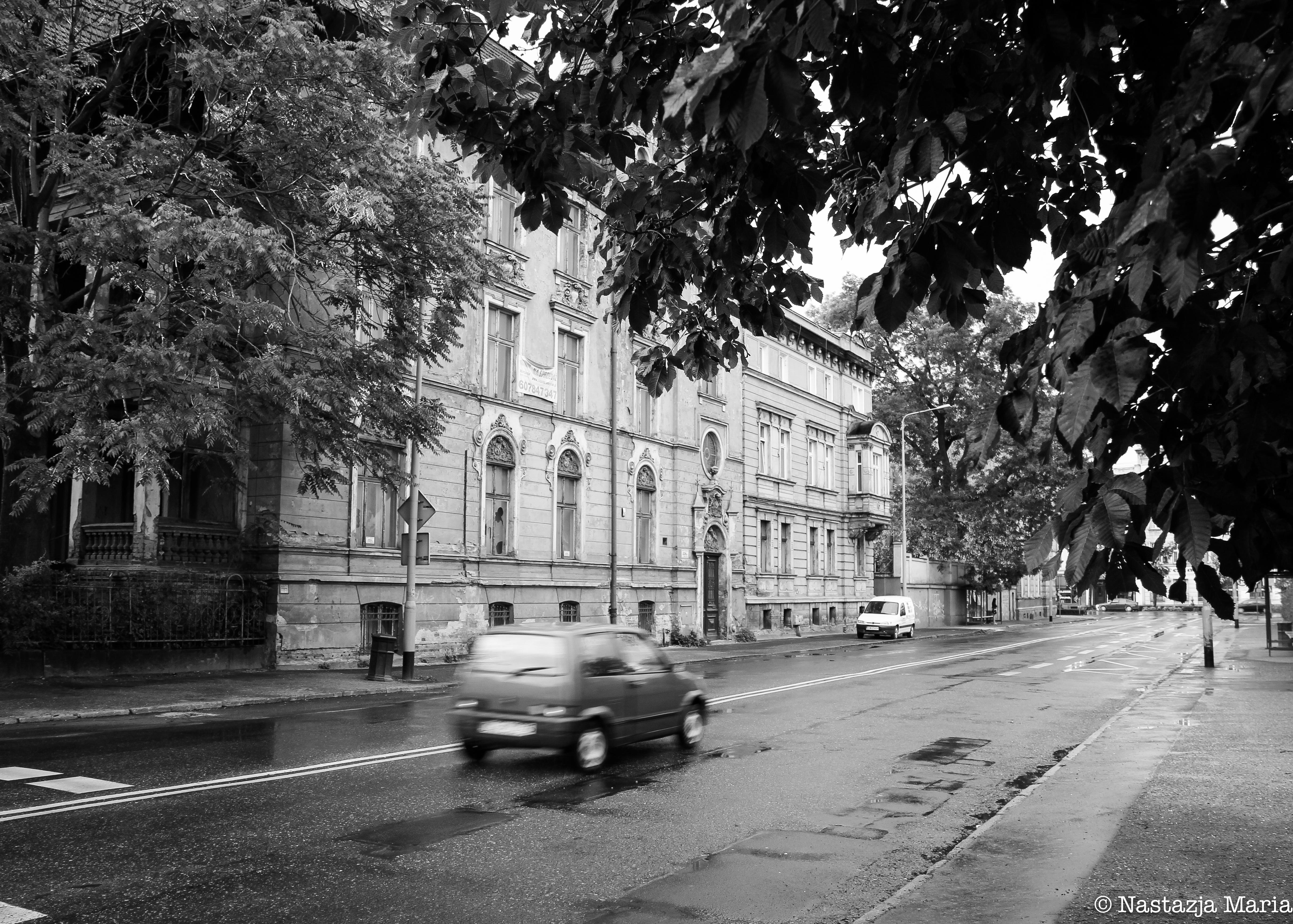 Car and street in Poland, 5 x 7.jpg