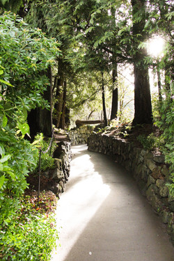 stone wall path 4 x 6