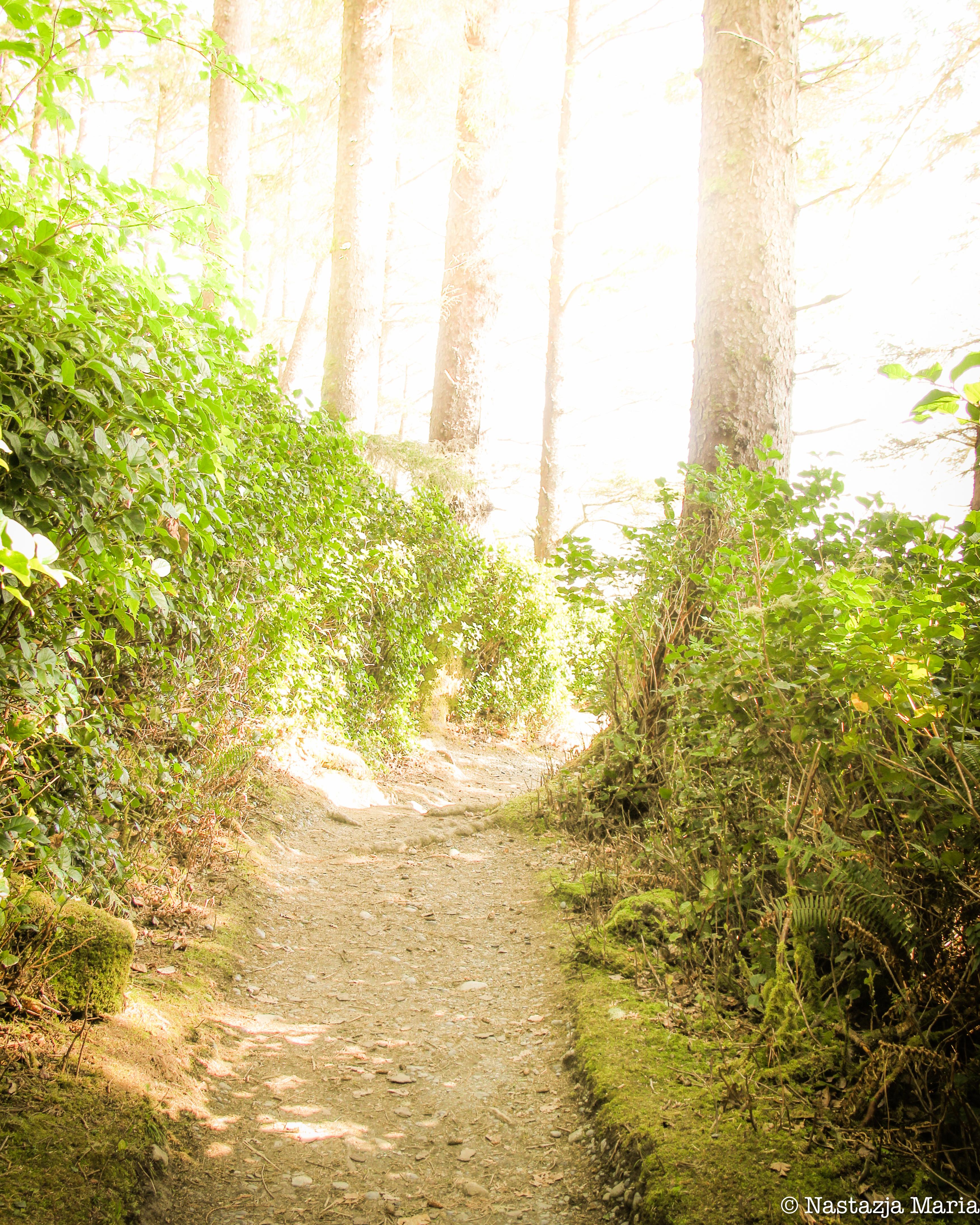Magical Path to China Beach 8n x 10.jpg