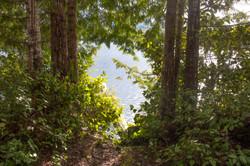 magical lake path 4 x 6