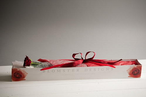 A Single Red Rose in a Presentation Bag