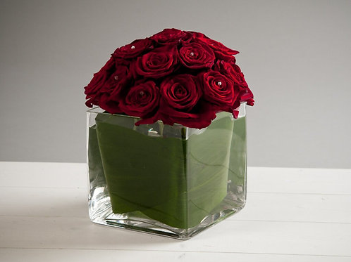 Dome of Roses in a Cube Vase