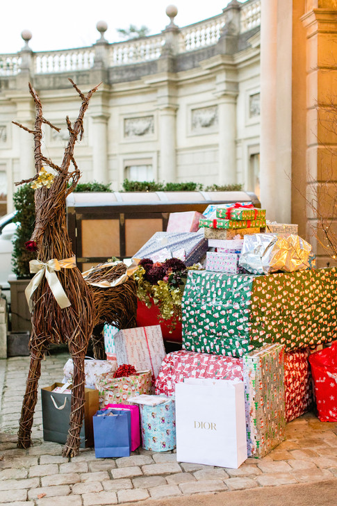 Cliveden House hotel – photography by Roberta Facchini. Reindeer and Sleigh supplied by Blomster Designs. Wedding presents all donated to children for Christmas.