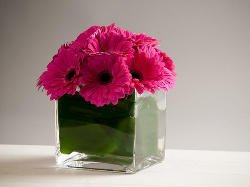 Dome of Gerbera in a Cube Vase