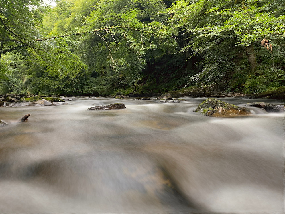 Riverside walk and flowing water of the River Barle, Tarr Steps, Somerset