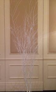 White Painted Birch Tree