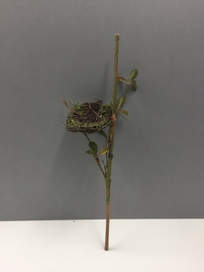 Rustic Branch