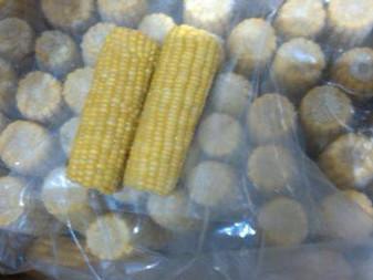 Corn on Cob Supplier in dubai
