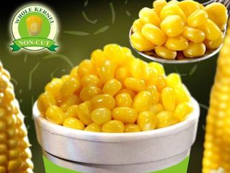 Sweet corn supplier in Dubai