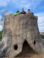 Employment_Tree Trunk.jpg