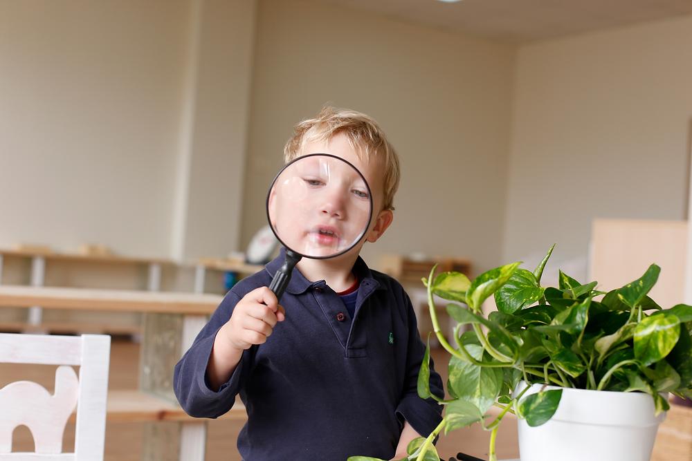 criança desenvolve a inteligência montessori de forma ativa