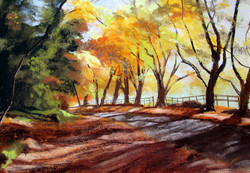 Cotswold Dell in Autumn