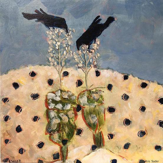 Ravens Eating Yucca Seeds