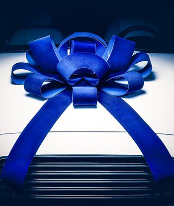 Blue_Velvet_Jum_Bow_ez_544