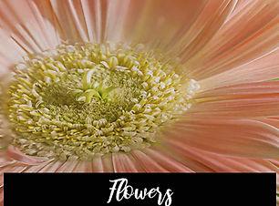 2020_flowers.jpg