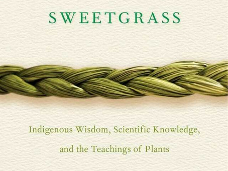 Book Review: Braiding Sweetgrass