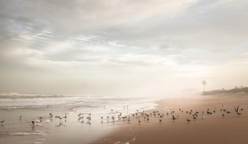 COLOUR - Sea Mist, Flager Beach by Judith Kimber (10 marks)