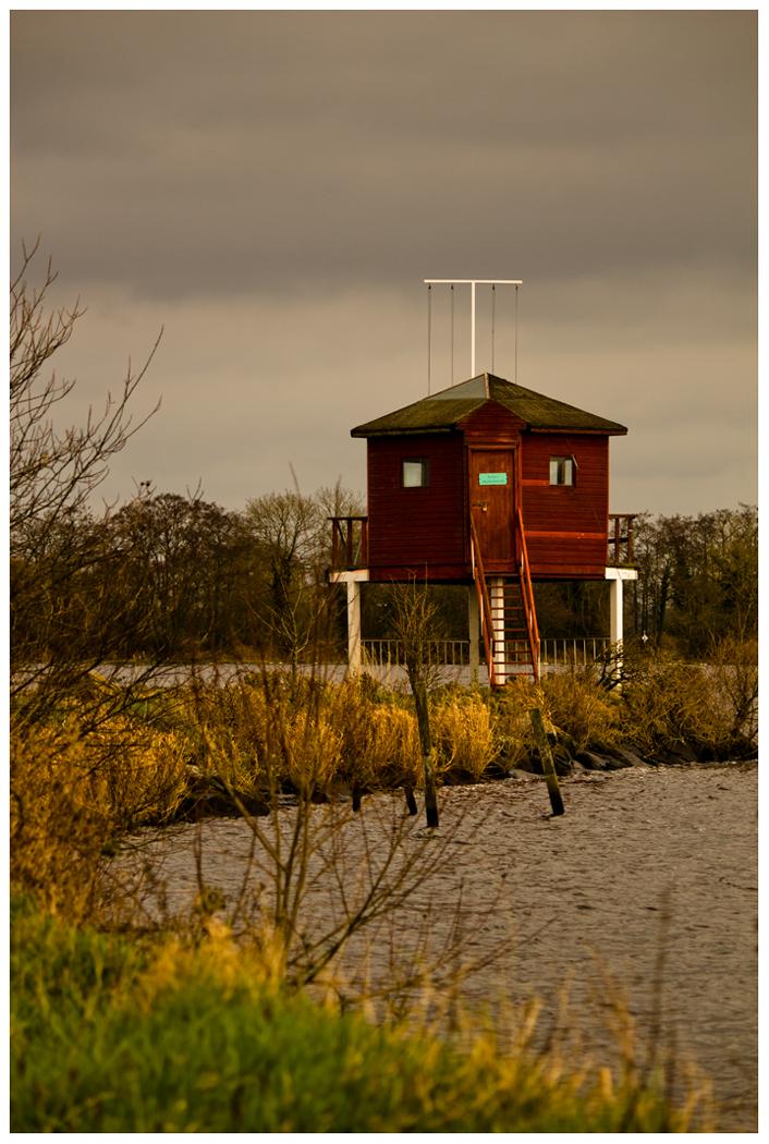 H_Watch house M Ross .jpg