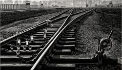 3rd_Death Tracks_Stephen McWilliams ARPS_CBPPUCC.jpg