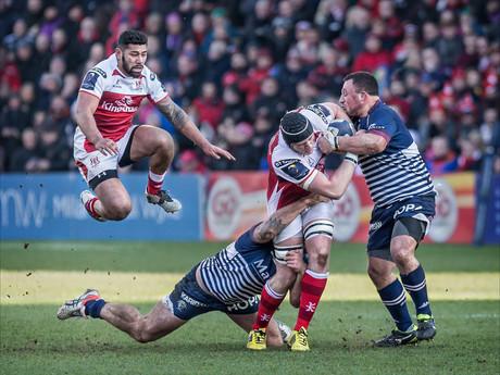 S-1-Ninja Rugby-Bob Given-Catchlight.jpg