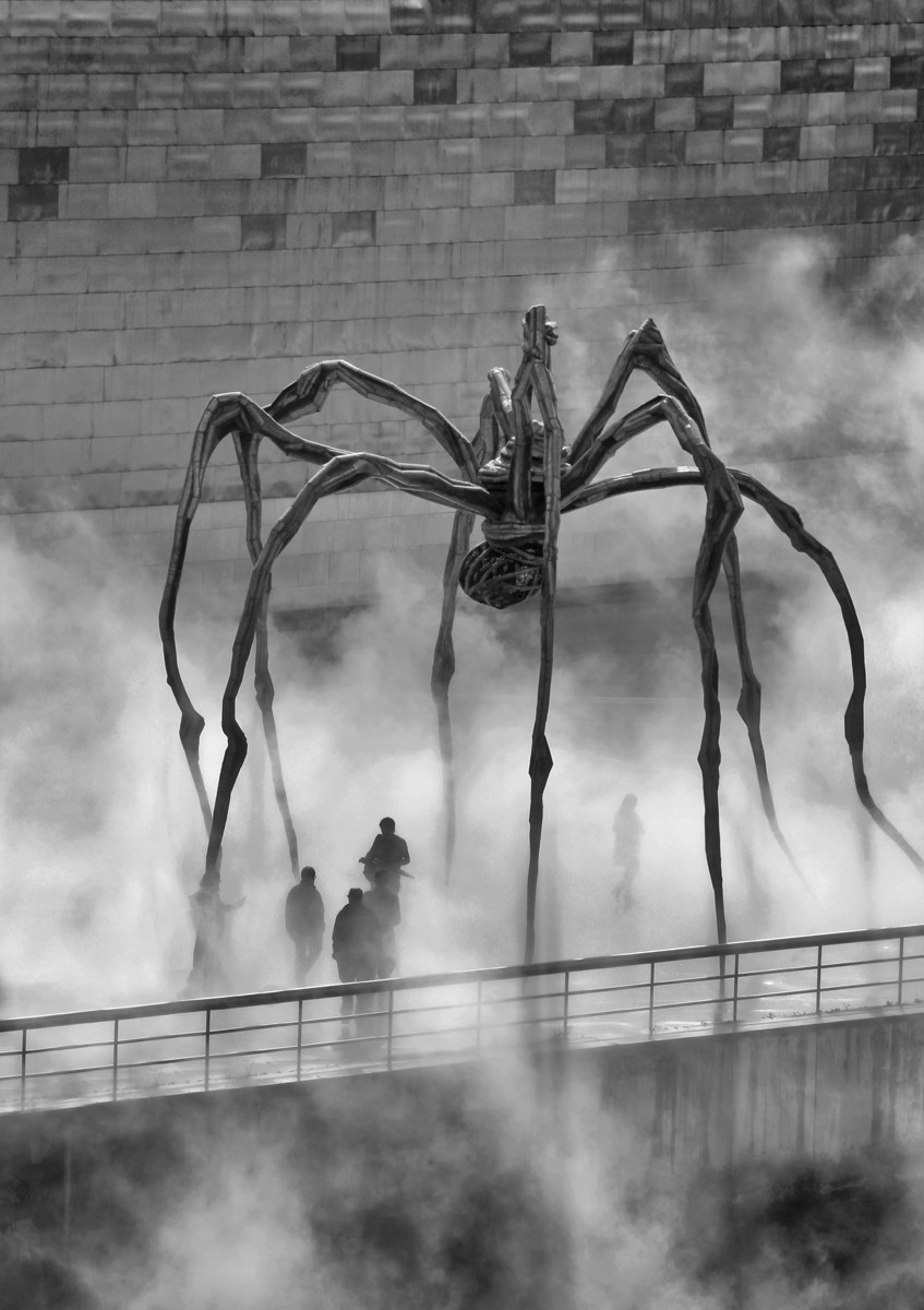 MONO - Spider Shadows by Linda Hutchinson (9 marks)