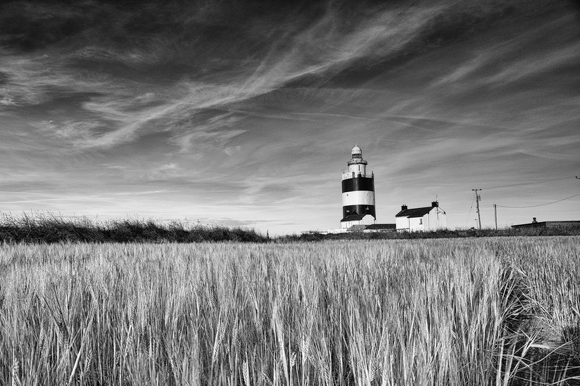 MONO - Morning Light by Oliver Molloy (9 marks)