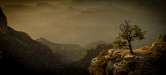 """""""Canyon Sunset"""" by Terry McCreesh"""