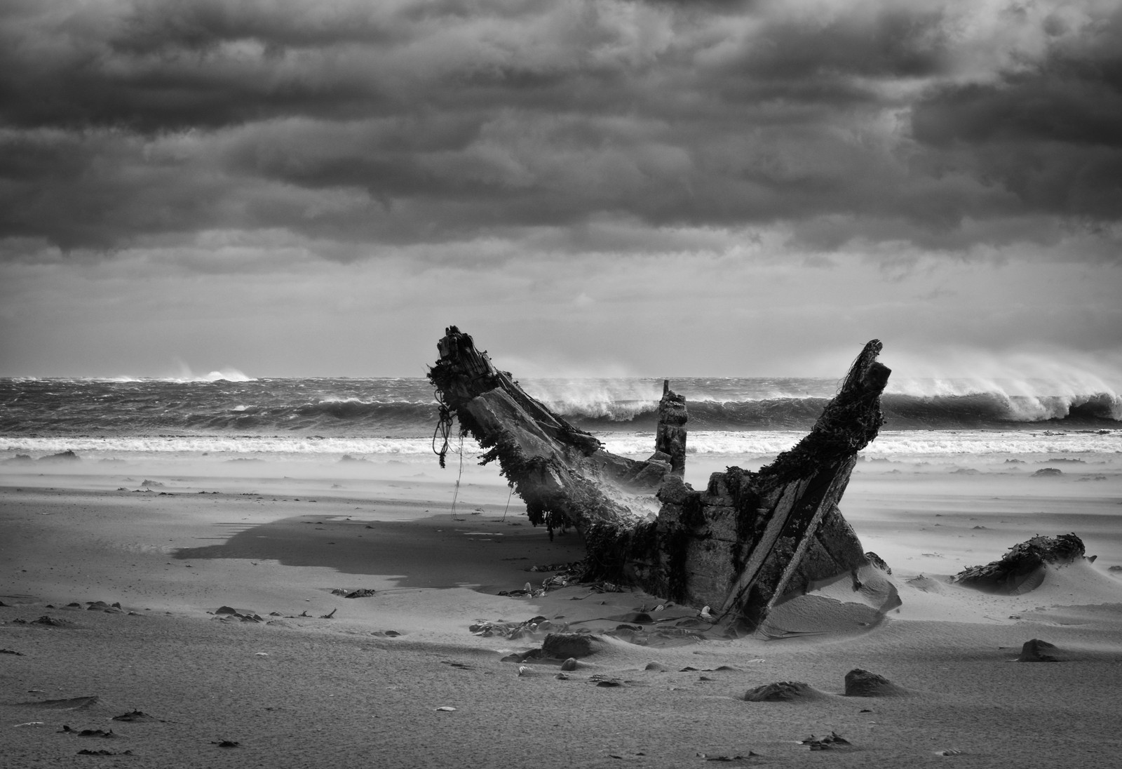 MONO - Tidal Erosion by Mark Edgar (undefined marks)