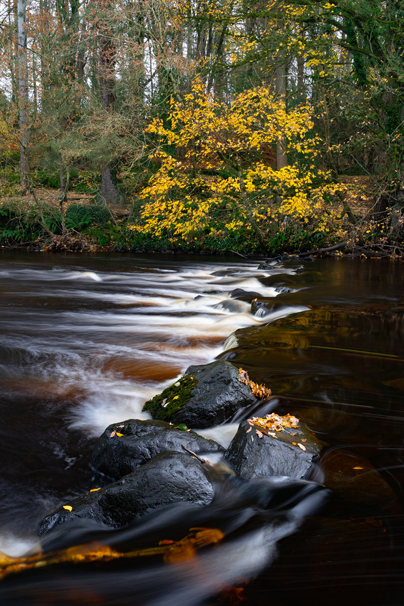 PDI - Watching The River Flow - Bob Dylan by John Cregan (9 marks)