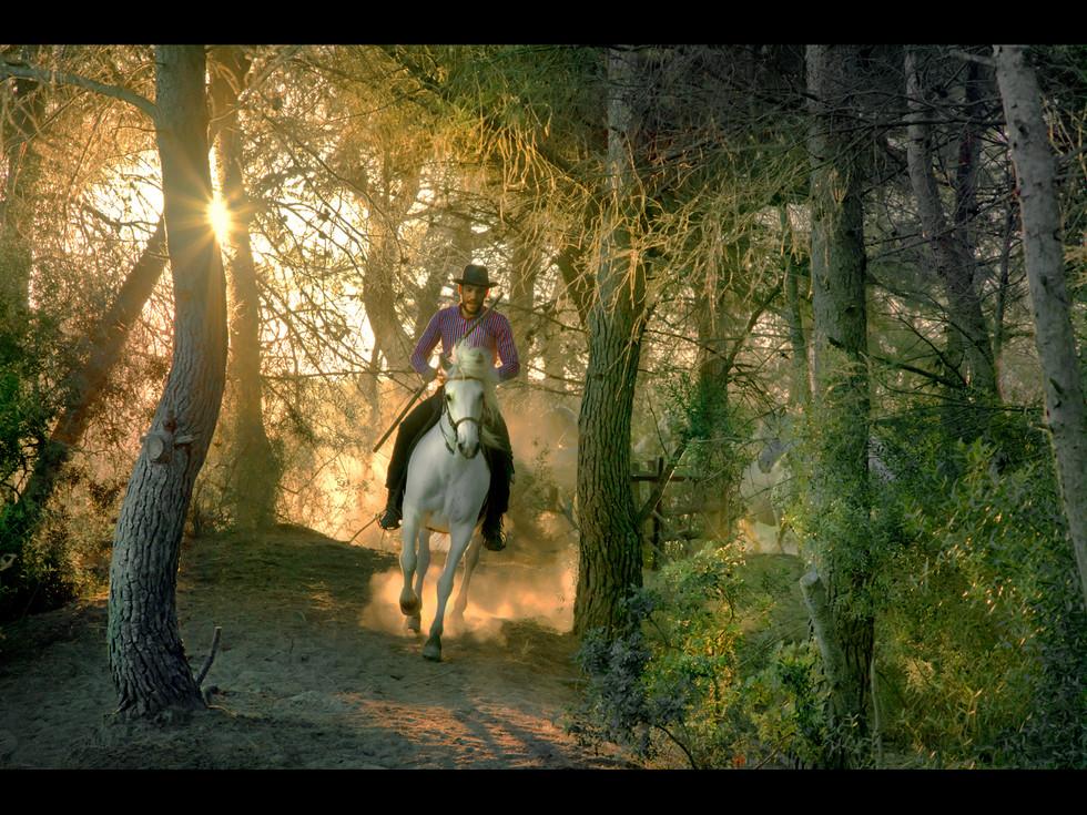 COLOUR - Riding Through at Dawn by Dorothy Flint (15 marks)
